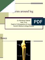 Injuries Around Leg