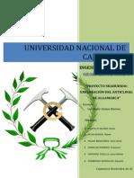PROYECTO ALGAMARCA final.docx