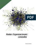 Vivianne Amaral - Redes Organizacionais