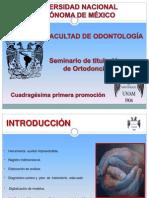 Modelos de Estudio en Ortodoncia
