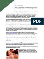 109554635 Importancia de La Estimulacion Prenatal