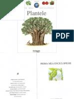 Prima-mea-enciclopedie-Plantele.pdf