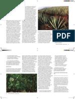 EDT FAO pdf.pdf