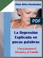La Depresion Explicada Pocas Palabras-una Guia Para Paciente Familiares