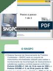 Manual de Implantação do Sistema Nacional de Gerenciamento de Produtos Controlados - PARTE 01