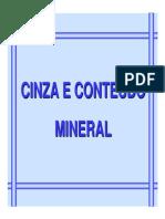 CINZA E CONTEÚDO MINERAL