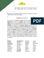 Clau accentuació.pdf