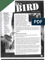 how to build a bird