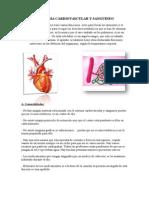 Sistema Cardiovascular y Sanguineo