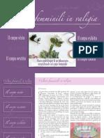 Culture in Valigia
