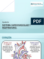 Sistema cardiovascular  y respiratorio.pptx