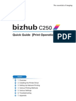 Bizhub c250 Quick Guide