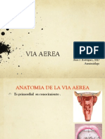 Via Aerea Jr Ucc Edit PDF