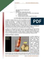 Biologia Celular Citologia y Teoria Celular Lectura 2008