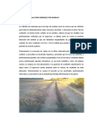 SARDINELES-imprimacion