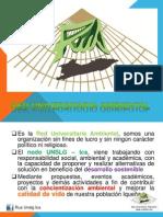Presentacion de RUA UNSLG