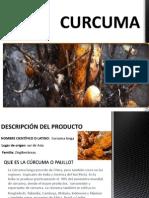 Curcuma Expo