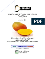 Mango_VCA_Final_January_2011.pdf