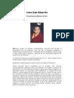 Budismo - Zopa Rimpoche - Enseñanza Sobre La Ira