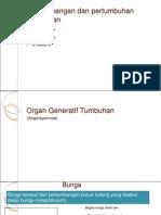 Perkembangan Dan Pertumbuhan Tumbuhan PPT