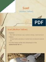 Suet (Mutton Tallow) Report