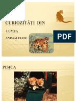 Curiozitati Despre Animale