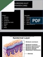 efloresensi kulit