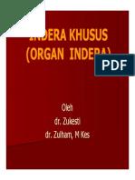 slide_indera_khusus.pdf