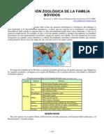 clasificacion_zoologica_de_la_familia_bovidos.pdf