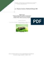salamandra.pdf