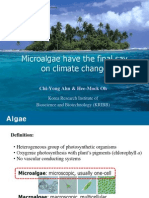 Microalgae Have the Final Say
