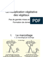 7.1 La Multiplication Vegetative Des Vegetaux