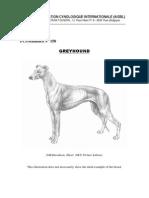 Greyhound Standard Translated in Romanian