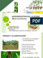Agroindustria Del Platano