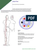 bladder-meridian-flow.pdf