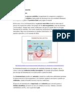Proceso de fermentacion.pdf
