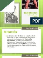 BARTONELOSIS
