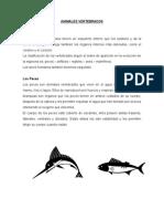 animales vertebradoss.doc