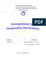 Concepciones y/o Perspectivas Del Currículo
