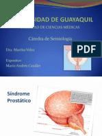 Sindromes Prostáticos