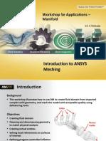 Mesh-Intro 14.5 WS05e Applications Manifold