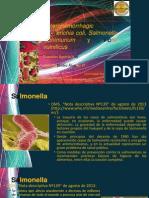 Salmonella, E. Coli y Come Carne