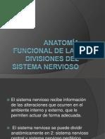 Anatomía Funcional de Las Divisiones Del Sistema Nervioso