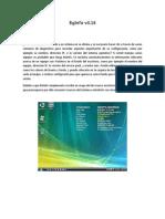 BgInfo v4.pdf