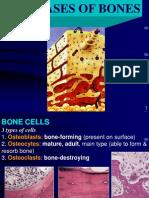 16-Bone_Part_1.pdf