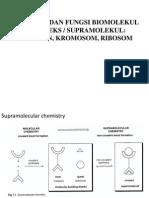 Struktur Dan Fungsi Biomelekul Kompleks[1] - Copy