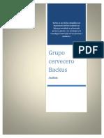 Análisis de la compañía Bakus