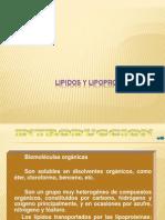 Clase 6 Lipidos