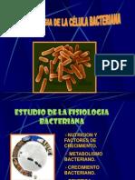 Nutricion Metabolica bacteriana