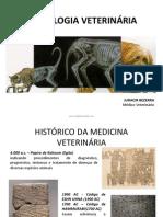 1 - radiologia em medicina veterinária.pdf